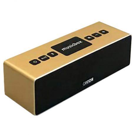Портативная акустика Canton Musicbox XS gold